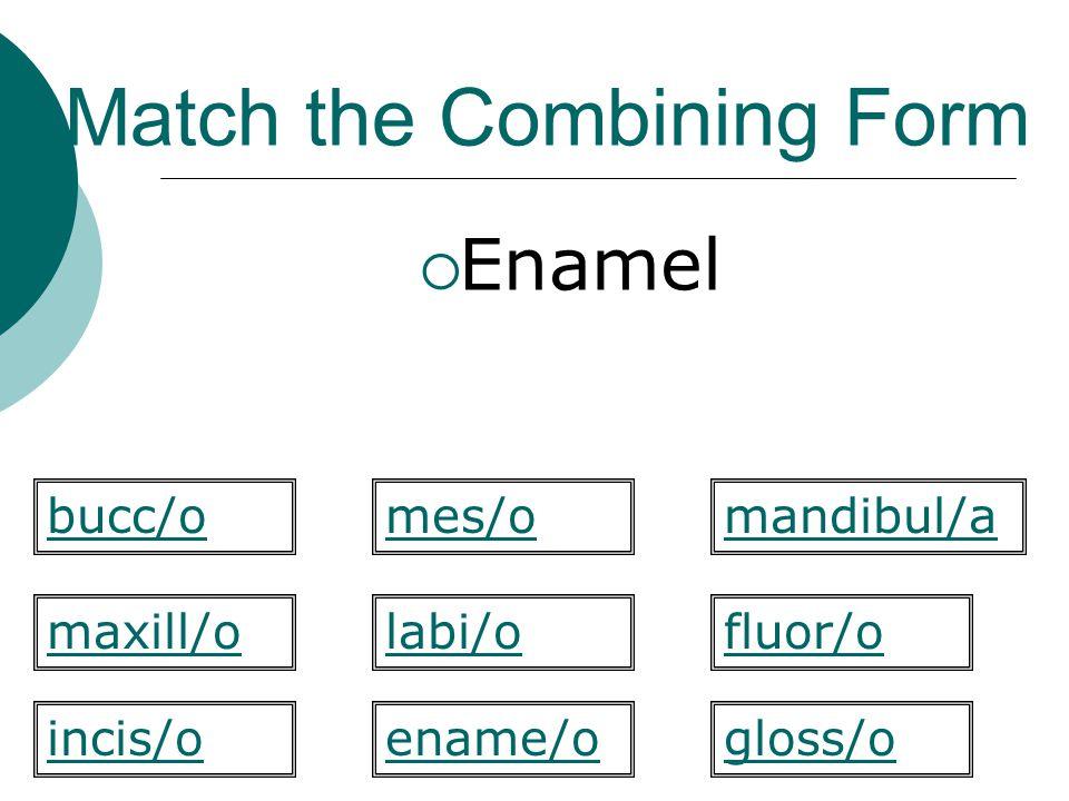 Match the Combining Form  Enamel labi/o mandibul/a maxill/ofluor/o gloss/oincis/o bucc/omes/o ename/o