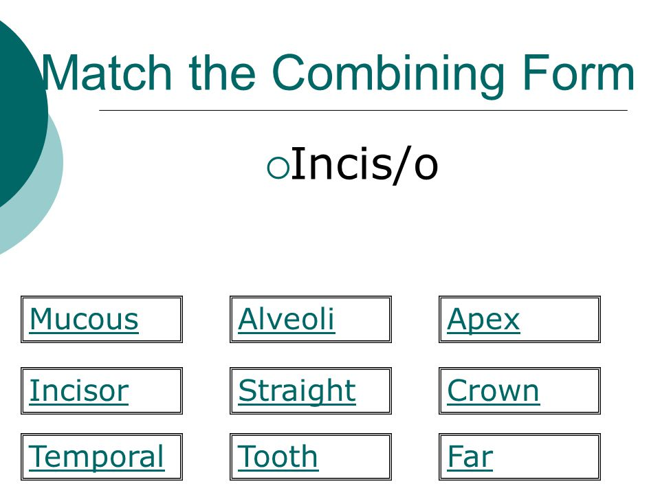 Match the Combining Form  Incis/o Straight Apex IncisorCrown FarTemporal MucousAlveoli Tooth