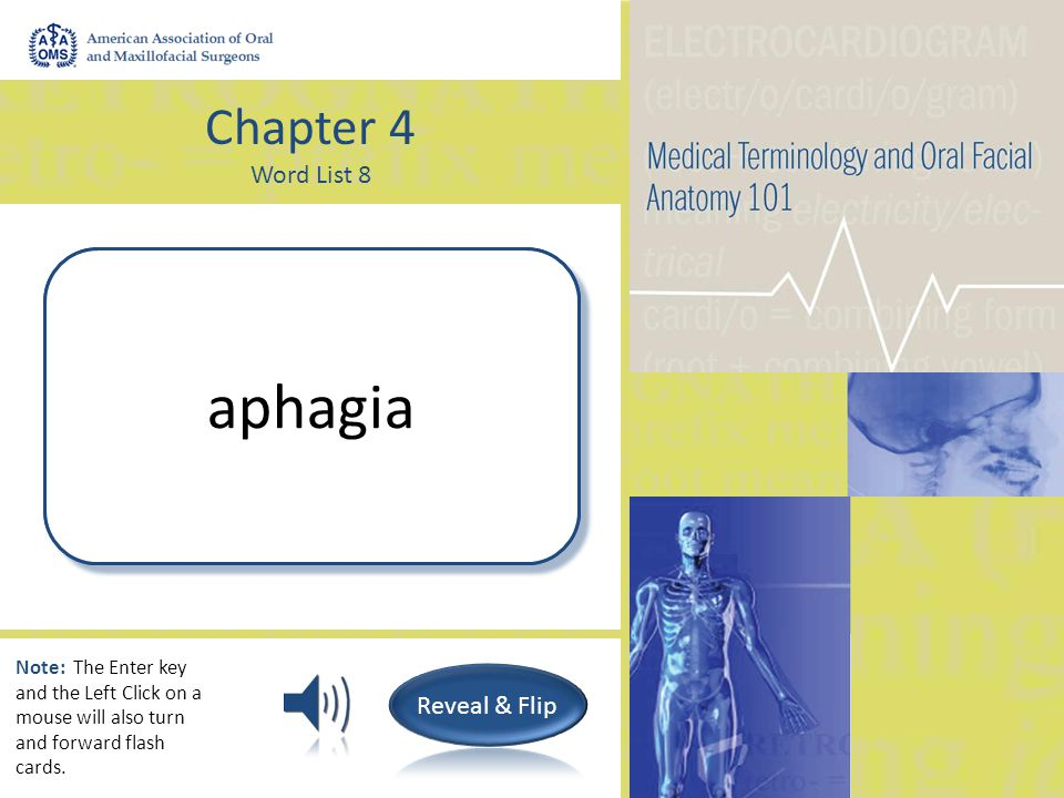Chapter 4 Word List 8 Painful digestion dyspepsia Note: The Enter key and the Left Click on a mouse will also turn and forward flash cards.