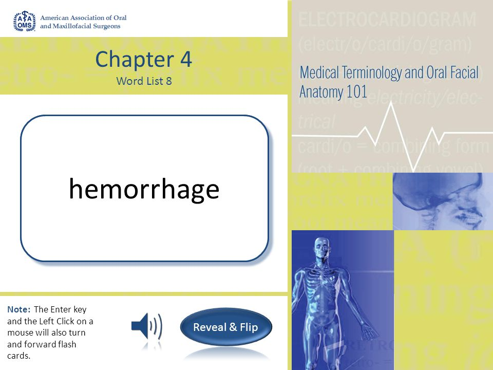 Chapter 4 Word List 8 Spitting up of blood hemoptysis Note: The Enter key and the Left Click on a mouse will also turn and forward flash cards.
