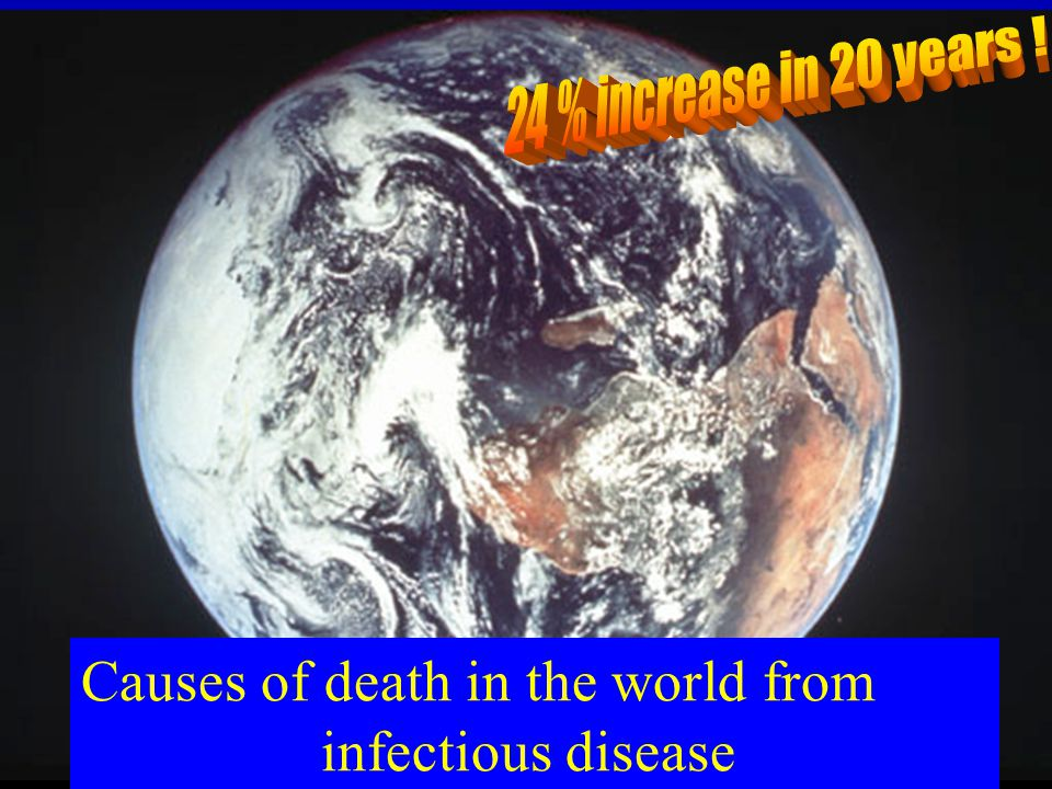 Causes of death in the world from infectious disease