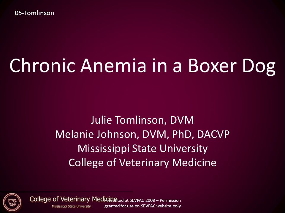 Signalment/History 3-year-old, SF, Boxer Dog 2 month hx of anemia Previous treatments: – Multiple blood transfusions – Doxycycline – Prednisone – Vitamin K Presented at SEVPAC 2008 – Permission granted for use on SEVPAC website only