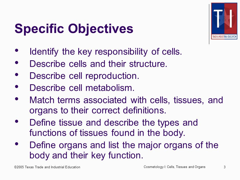 ©2005 Texas Trade and Industrial Education Cosmetology I: Cells, Tissues and Organs 2 Performance Objectives Upon completion of this lesson, the student will be able to identify and describe the functions of cells, tissues, and major body organs.