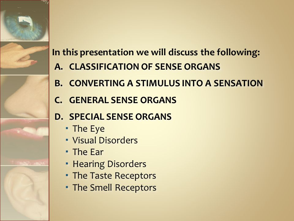 In this presentation we will discuss the following: A.CLASSIFICATION OF SENSE ORGANS B.CONVERTING A STIMULUS INTO A SENSATION C.GENERAL SENSE ORGANS D.SPECIAL SENSE ORGANS  The Eye  Visual Disorders  The Ear  Hearing Disorders  The Taste Receptors  The Smell Receptors A.CLASSIFICATION OF SENSE ORGANS B.CONVERTING A STIMULUS INTO A SENSATION C.GENERAL SENSE ORGANS D.SPECIAL SENSE ORGANS  The Eye  Visual Disorders  The Ear  Hearing Disorders  The Taste Receptors  The Smell Receptors