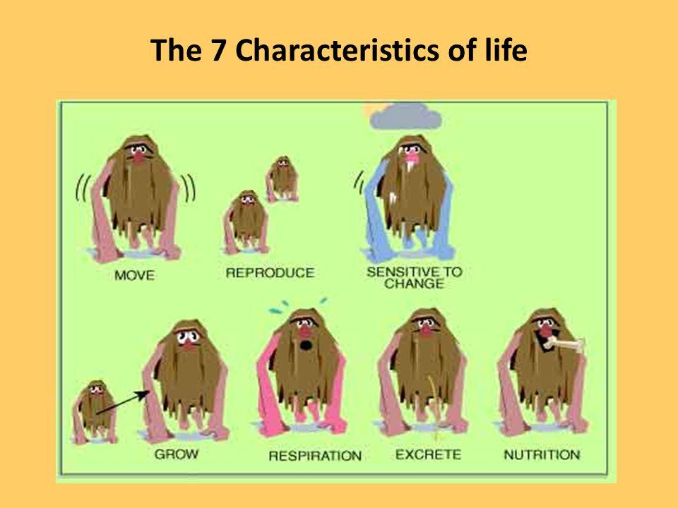 Characteristics Of Life - Lessons - Tes Teach