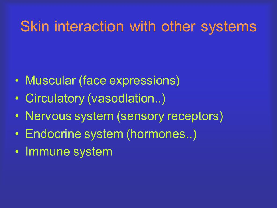 Skin interaction with other systems Muscular (face expressions) Circulatory (vasodlation..) Nervous system (sensory receptors) Endocrine system (hormones..) Immune system