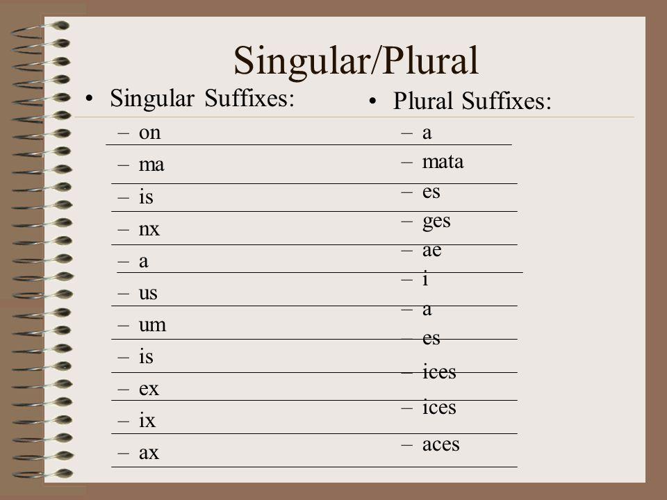 Singular/Plural Singular Suffixes: –on –ma –is –nx –a –us –um –is –ex –ix –ax Plural Suffixes: –a –mata –es –ges –ae –i –a –es –ices –aces