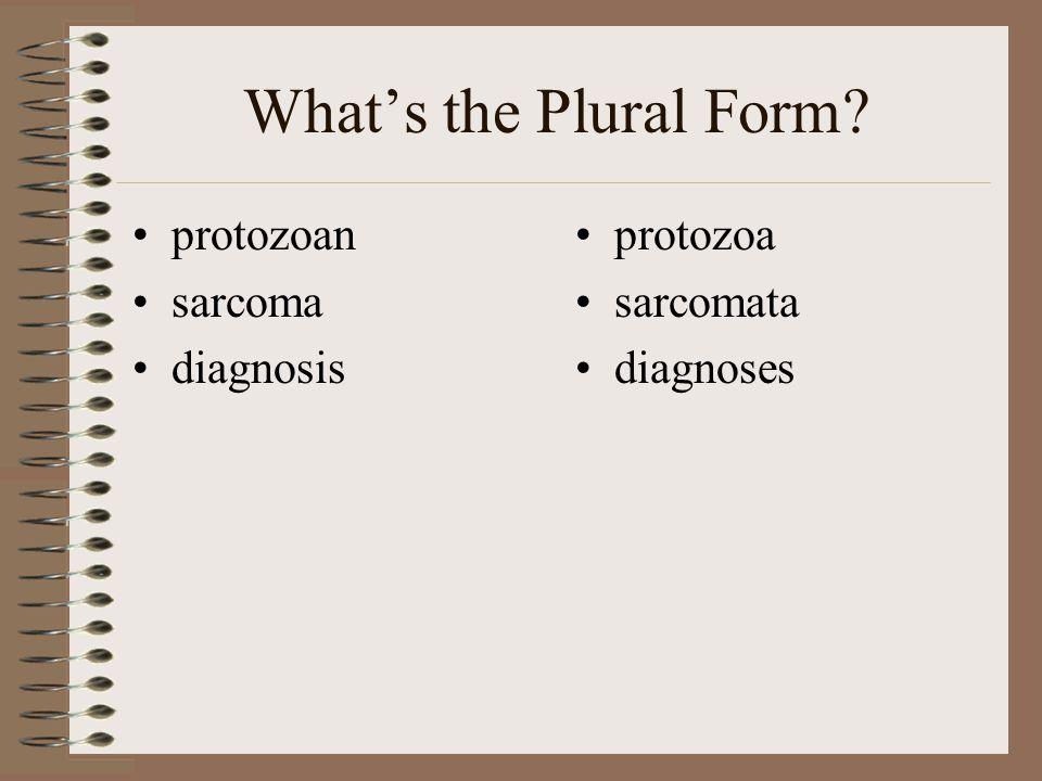 What's the Plural Form? protozoan sarcoma diagnosis protozoa sarcomata diagnoses