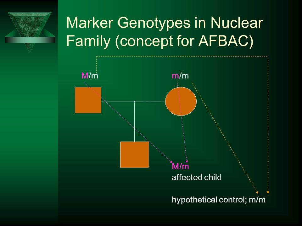 Marker Genotypes in Nuclear Family (concept for AFBAC) M/mm/m M/m affected child hypothetical control; m/m