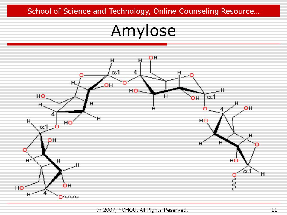 School of Science and Technology, Online Counseling Resource… Amylose © 2007, YCMOU.