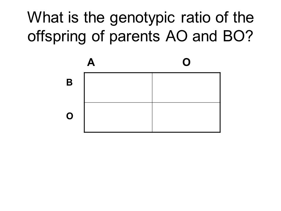What is the genotypic ratio of the offspring of parents AO and BO? A O BOBO