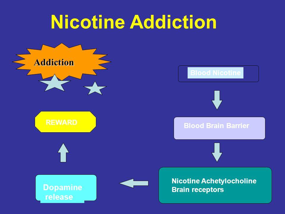 Nicotine Addiction Blood Nicotine Blood Brain Barrier Nicotine Achetylocholine Brain receptors Dopamine release Addiction REWARD