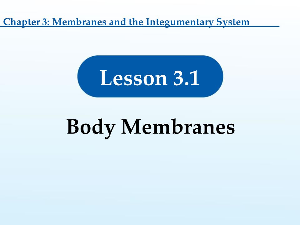 Lesson 3.1 Body Membranes Chapter 3: Membranes and the Integumentary System