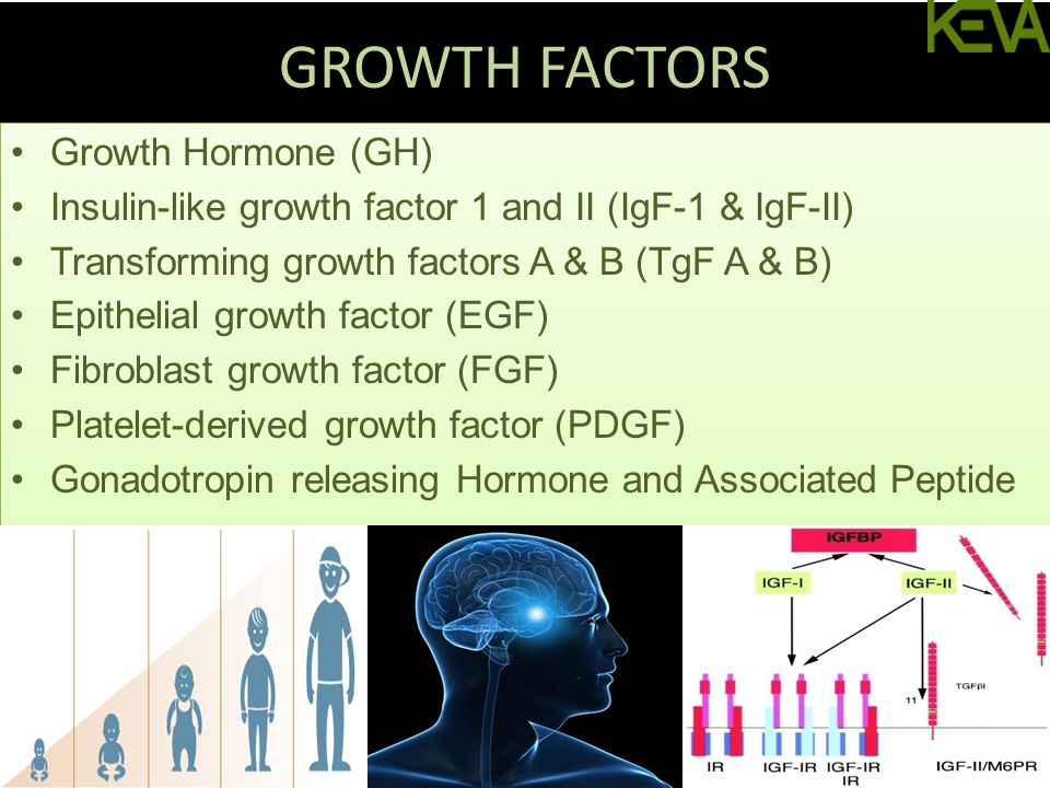 GROWTH FACTORS Growth Hormone (GH) Insulin-like growth factor 1 and II (IgF-1 & IgF-II) Transforming growth factors A & B (TgF A & B) Epithelial growth factor (EGF) Fibroblast growth factor (FGF) Platelet-derived growth factor (PDGF) Gonadotropin releasing Hormone and Associated Peptide Growth Hormone (GH) Insulin-like growth factor 1 and II (IgF-1 & IgF-II) Transforming growth factors A & B (TgF A & B) Epithelial growth factor (EGF) Fibroblast growth factor (FGF) Platelet-derived growth factor (PDGF) Gonadotropin releasing Hormone and Associated Peptide