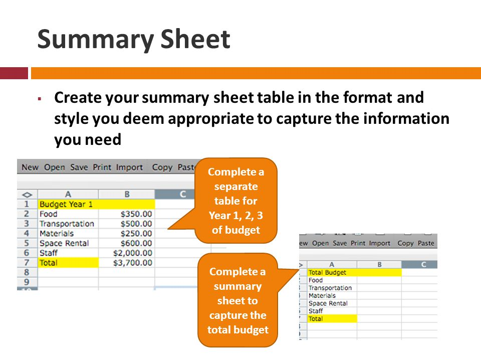 Summary Sheet  Create your summary sheet table in the format and style you deem appropriate to capture the information you need Complete a separate table for Year 1, 2, 3 of budget Complete a summary sheet to capture the total budget