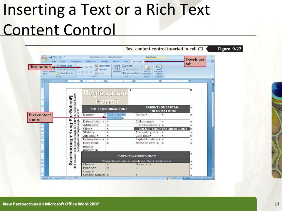 XP Inserting a Text or a Rich Text Content Control New Perspectives on Microsoft Office Word 200713