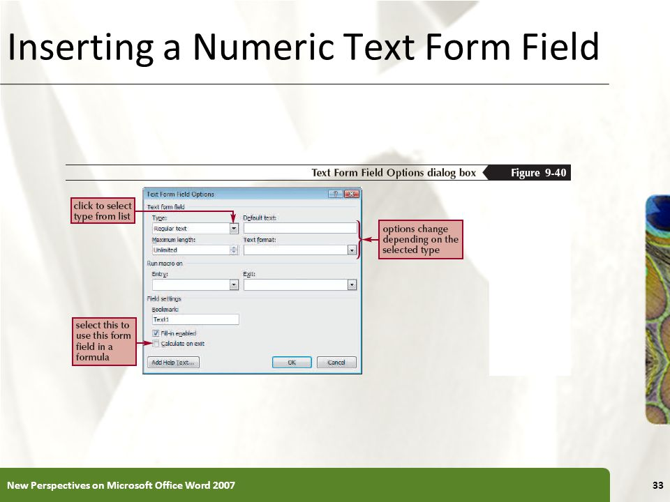 XP Inserting a Numeric Text Form Field New Perspectives on Microsoft Office Word 200733
