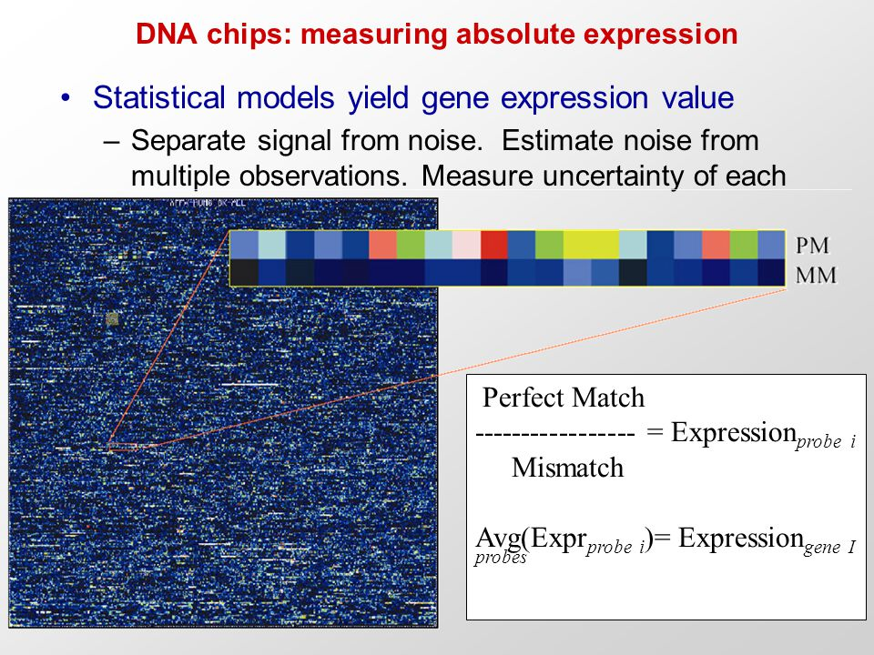 DNA chips: measuring absolute expression Statistical models yield gene expression value –Separate signal from noise. Estimate noise from multiple obse