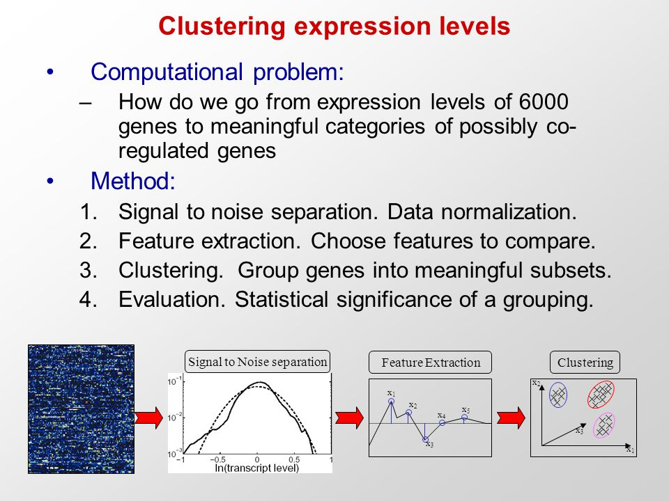 Clustering expression levels Computational problem: –How do we go from expression levels of 6000 genes to meaningful categories of possibly co- regulated genes Method: 1.Signal to noise separation.