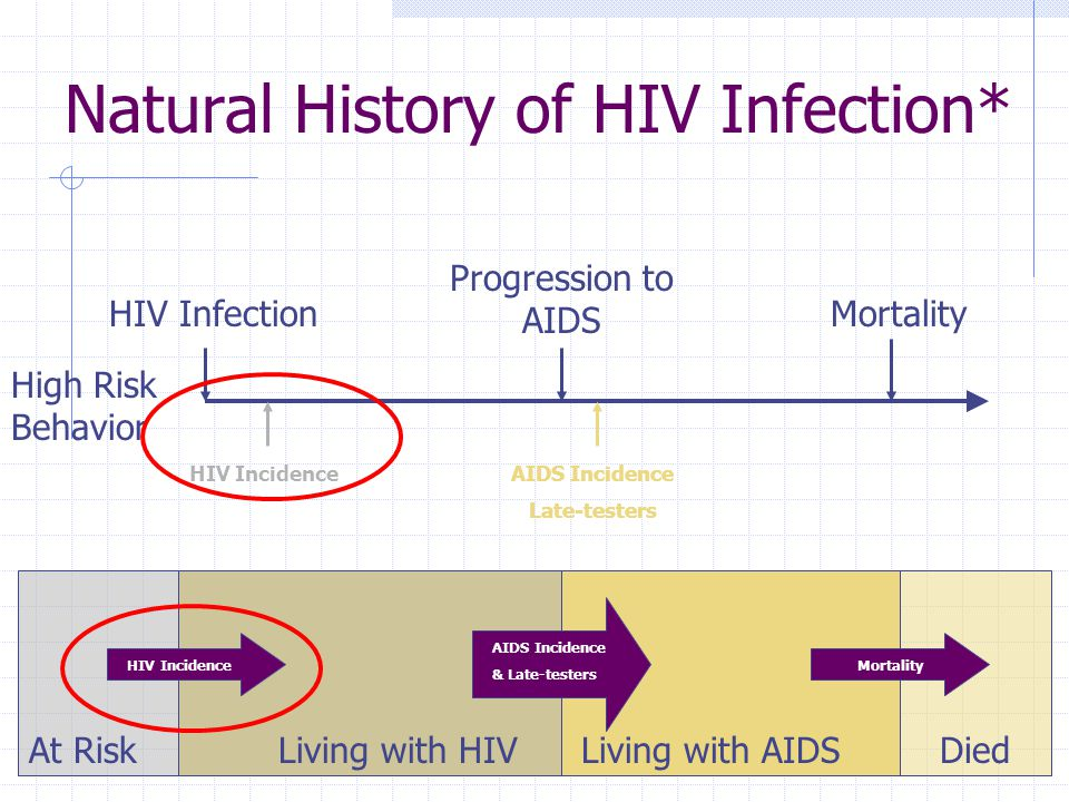 Natural History of HIV Infection* Progression to AIDS MortalityHIV Infection Living with HIVLiving with AIDS HIV Incidence High Risk Behavior AIDS Incidence Late-testers HIV Incidence AIDS Incidence & Late-testers Mortality At RiskDied