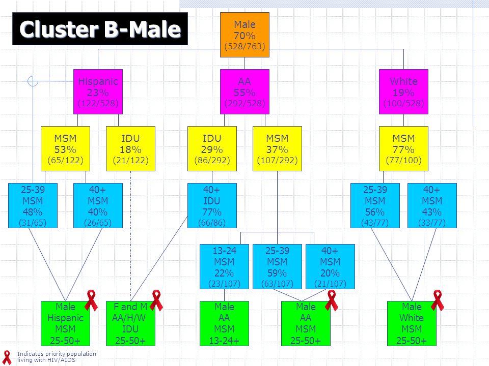 Male 70% (528/763) Hispanic 23% (122/528) AA 55% (292/528) IDU 18% (21/122) IDU 29% (86/292) 25-39 MSM 56% (43/77) 25-39 MSM 59% (63/107) 40+ MSM 43% (33/77) 40+ MSM 20% (21/107) MSM 77% (77/100) MSM 37% (107/292) 40+ MSM 40% (26/65) Male Hispanic MSM 25-50+ Male White MSM 25-50+ F and M AA/H/W IDU 25-50+ Cluster B-Male White 19% (100/528) Male AA MSM 25-50+ MSM 53% (65/122) 25-39 MSM 48% (31/65) 13-24 MSM 22% (23/107) 40+ IDU 77% (66/86) Male AA MSM 13-24+ Indicates priority population living with HIV/AIDS