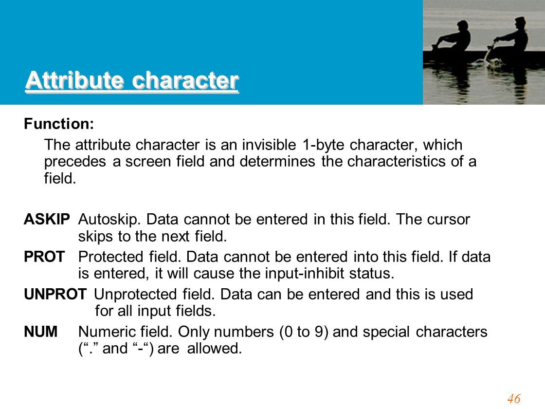 46 Attribute character Function: The attribute character is an invisible 1-byte character, which precedes a screen field and determines the characteri