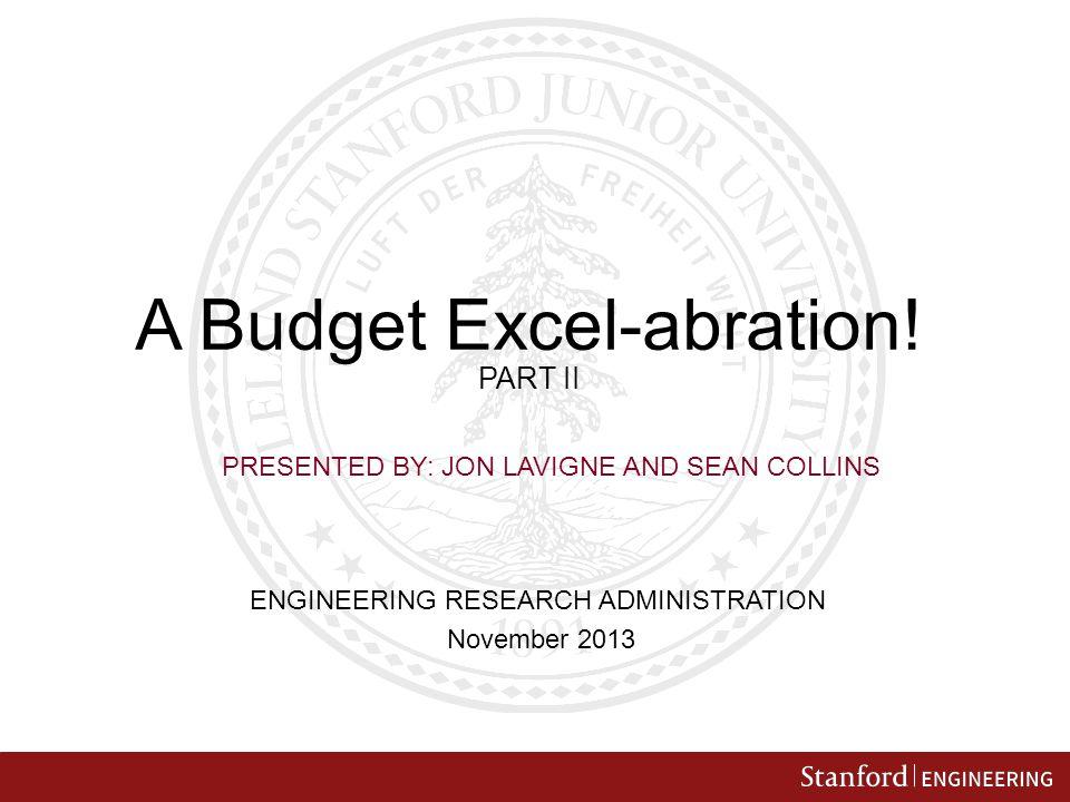 A Budget Excel-abration.