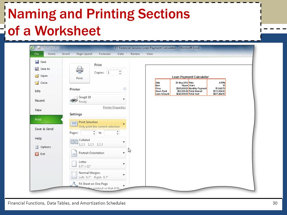 Financial Functions, Data Tables, and Amortization Schedules30 Naming and Printing Sections of a Worksheet