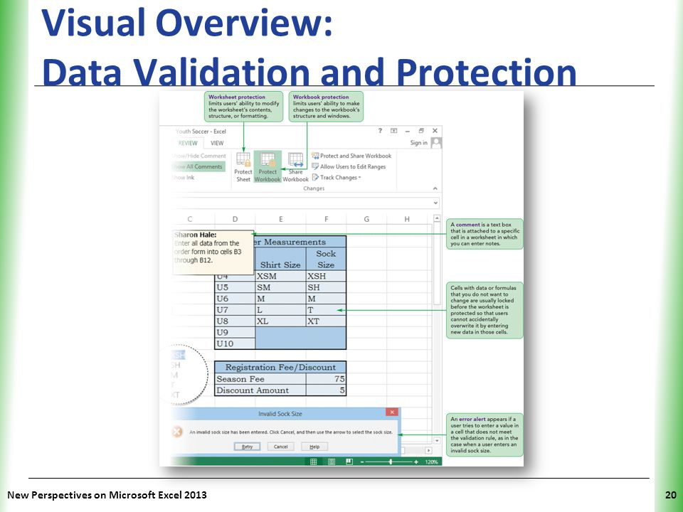 XP New Perspectives on Microsoft Excel 201320 Visual Overview: Data Validation and Protection