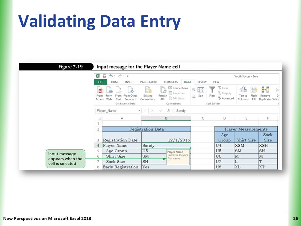 XP Validating Data Entry New Perspectives on Microsoft Excel 201326