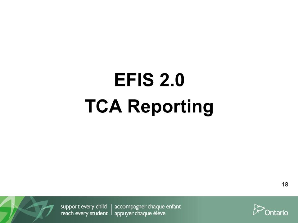 EFIS 2.0 TCA Reporting 18