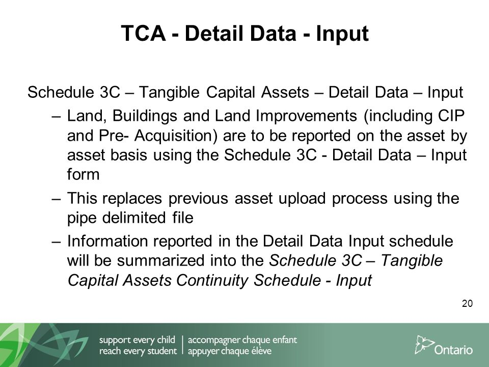 TCA - Detail Data - Input 20 Schedule 3C – Tangible Capital Assets – Detail Data – Input –Land, Buildings and Land Improvements (including CIP and Pre- Acquisition) are to be reported on the asset by asset basis using the Schedule 3C - Detail Data – Input form –This replaces previous asset upload process using the pipe delimited file –Information reported in the Detail Data Input schedule will be summarized into the Schedule 3C – Tangible Capital Assets Continuity Schedule - Input