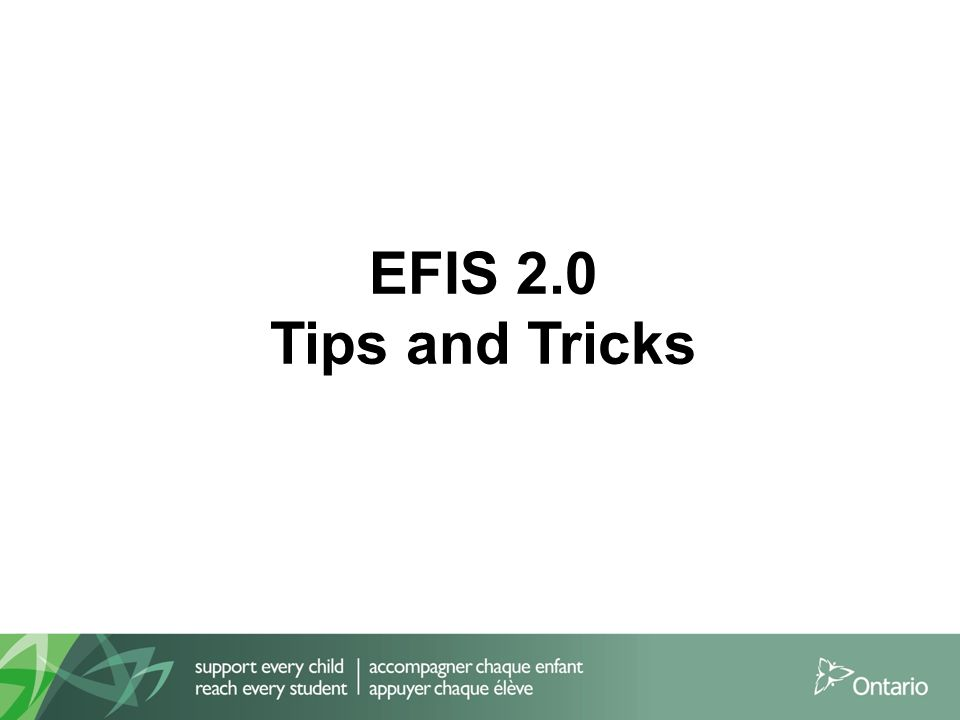 EFIS 2.0 Tips and Tricks