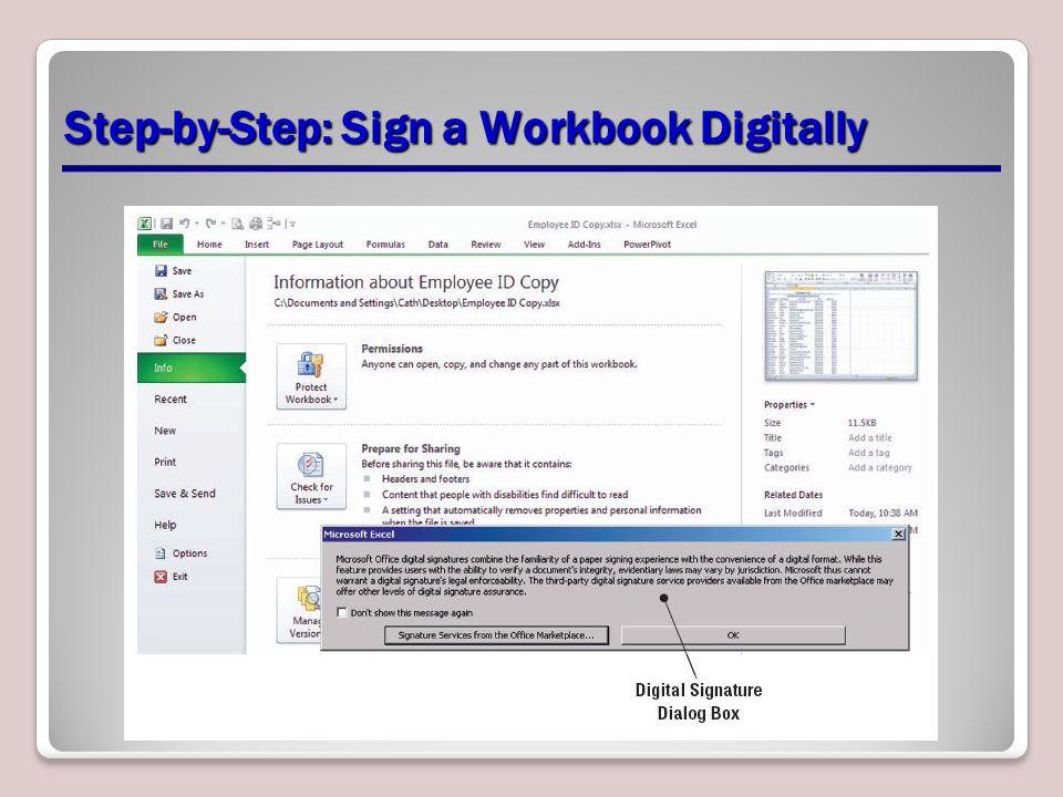 Step-by-Step: Sign a Workbook Digitally