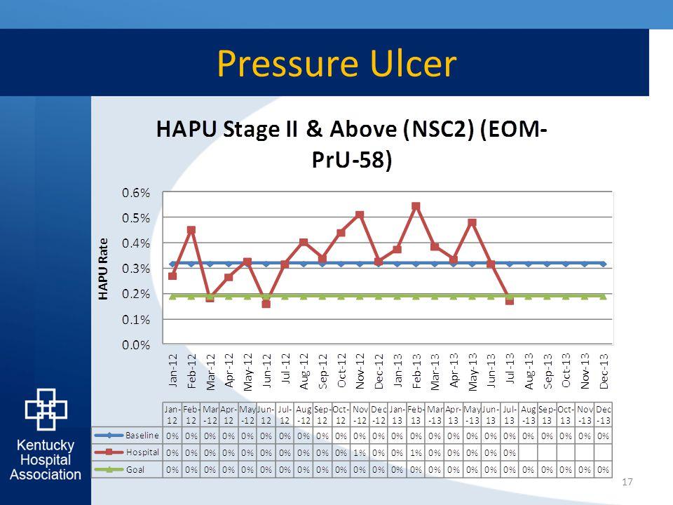 Pressure Ulcer 17