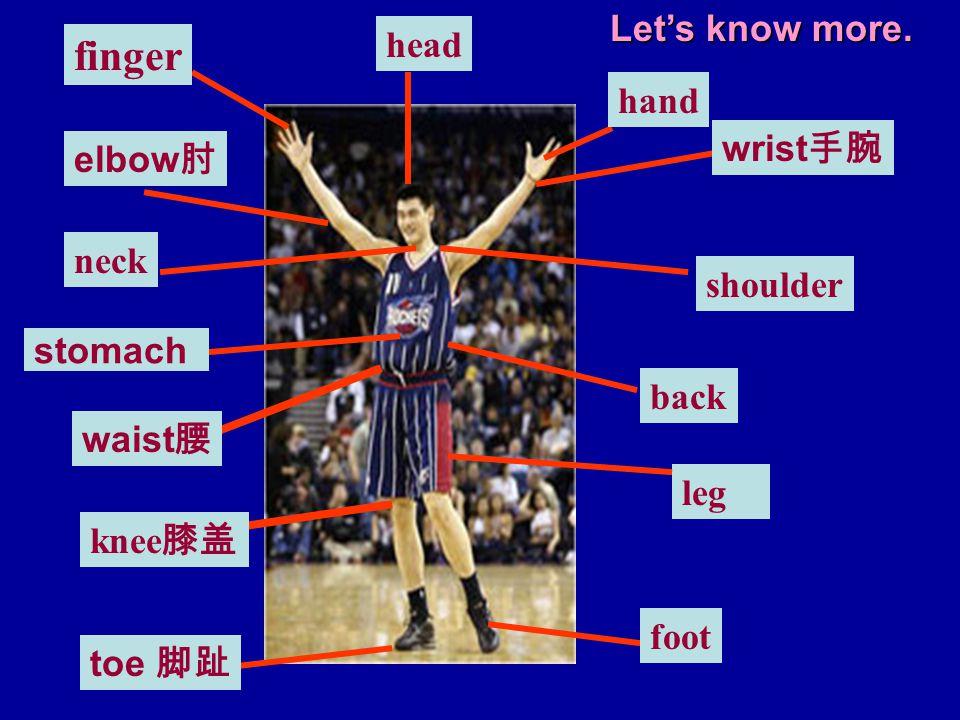 hand finger knee 膝盖 foot neck shoulder stomach leg wrist 手腕 waist 腰 toe 脚趾 elbow 肘 head back Let's know more.