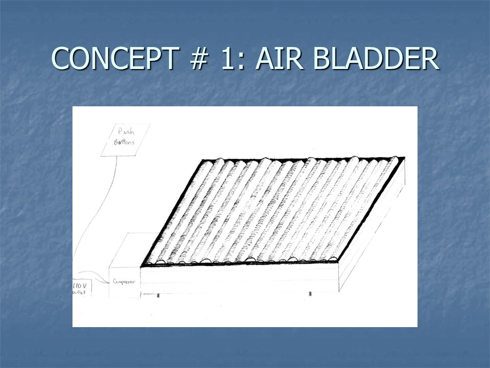 CONCEPT # 1: AIR BLADDER