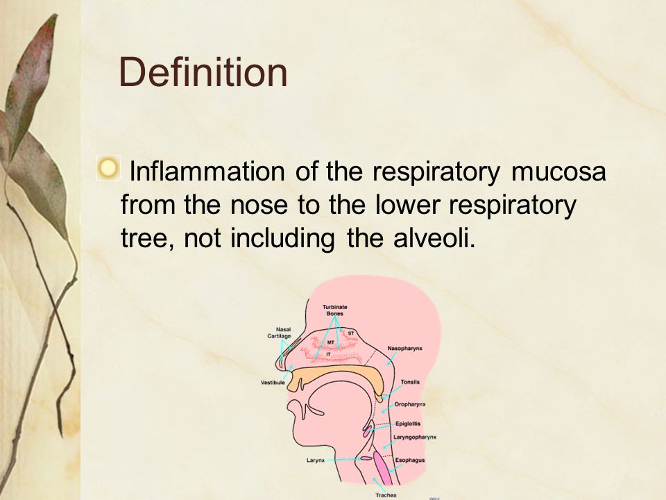 Definition Inflammation of the respiratory mucosa from the nose to the lower respiratory tree, not including the alveoli.