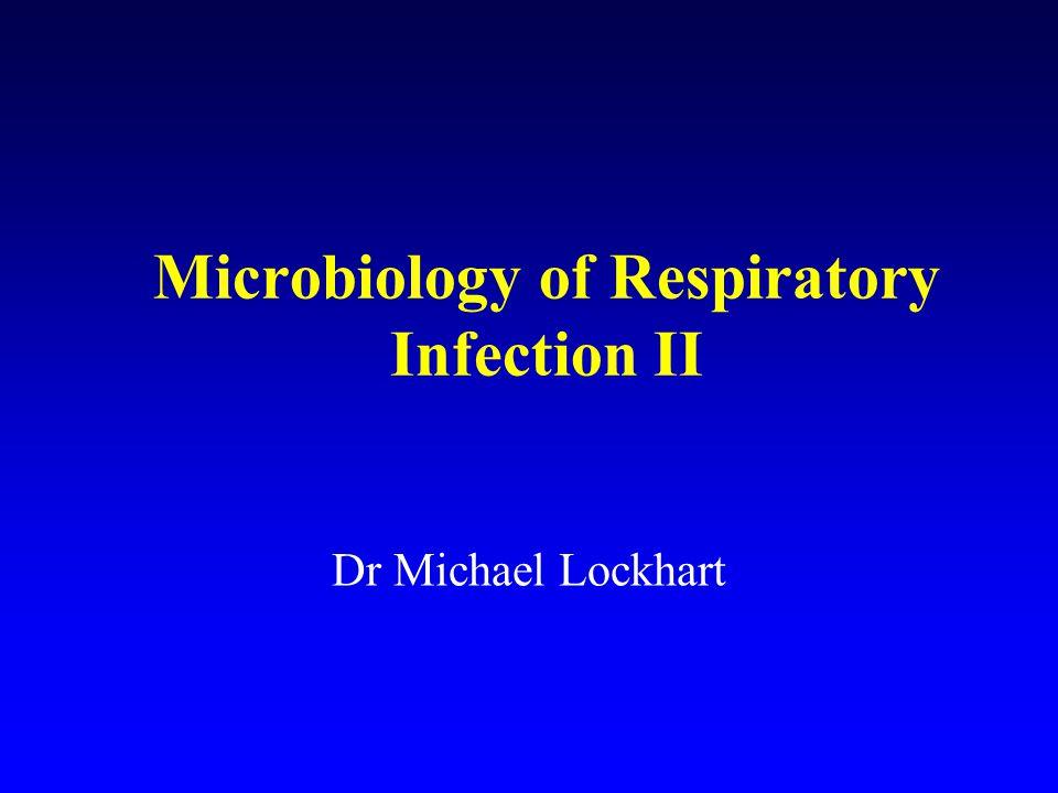 Infections of the lungs n Community acquired pneumonia n Nosocomial pneumonia n Legionnaires disease n Pneumocysitis carinii pneumonia (PCP) n Fungal chest infection n Tuberculosis
