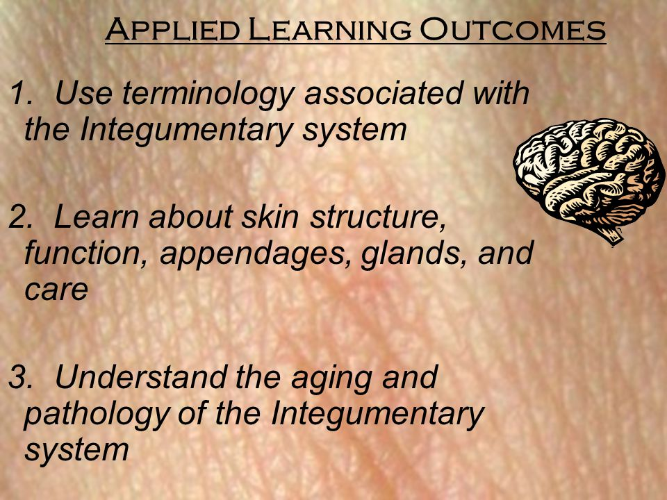 Concept Check Questions 19 - 21 19.Explain how the 3 categories of skin burns differ.
