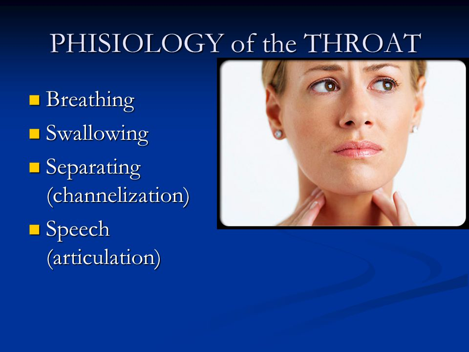 PHISIOLOGY of the THROAT Breathing Breathing Swallowing Swallowing Separating (channelization) Separating (channelization) Speech (articulation) Speech (articulation)