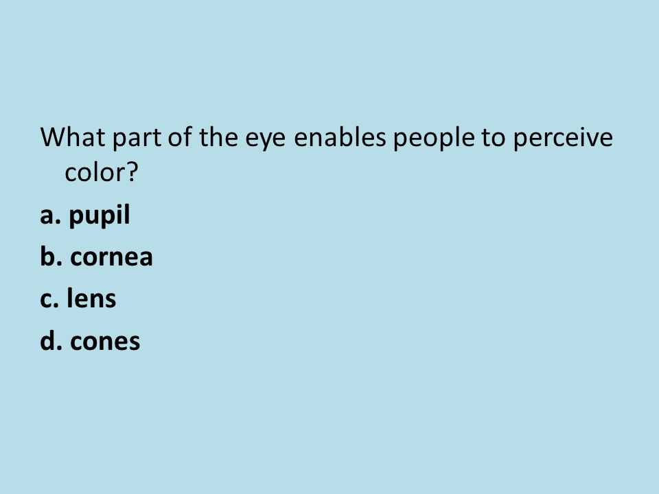 What part of the eye enables people to perceive color? a. pupil b. cornea c. lens d. cones
