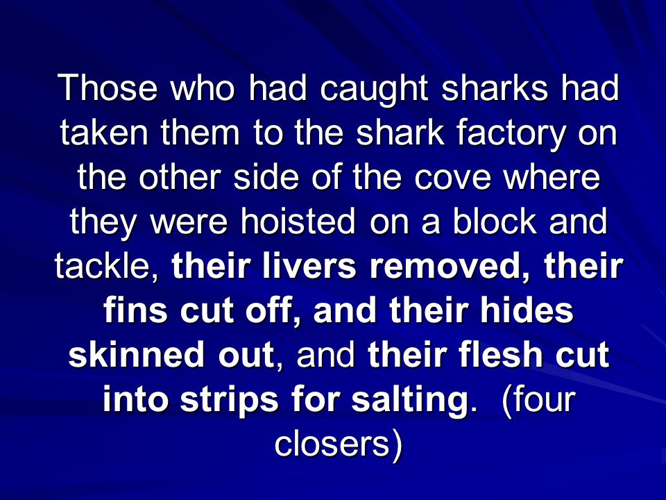 Those who had caught sharks had taken them to the shark factory on the other side of the cove where they were hoisted on a block and tackle, their livers removed, their fins cut off, and their hides skinned out, and their flesh cut into strips for salting.