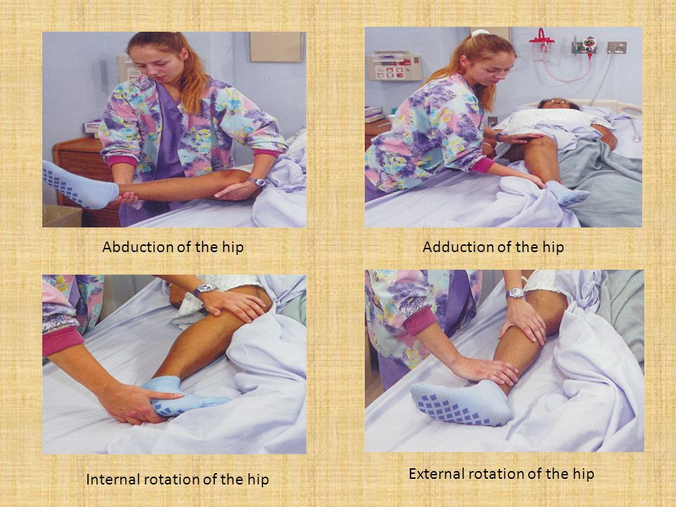 Abduction of the hipAdduction of the hip Internal rotation of the hip External rotation of the hip
