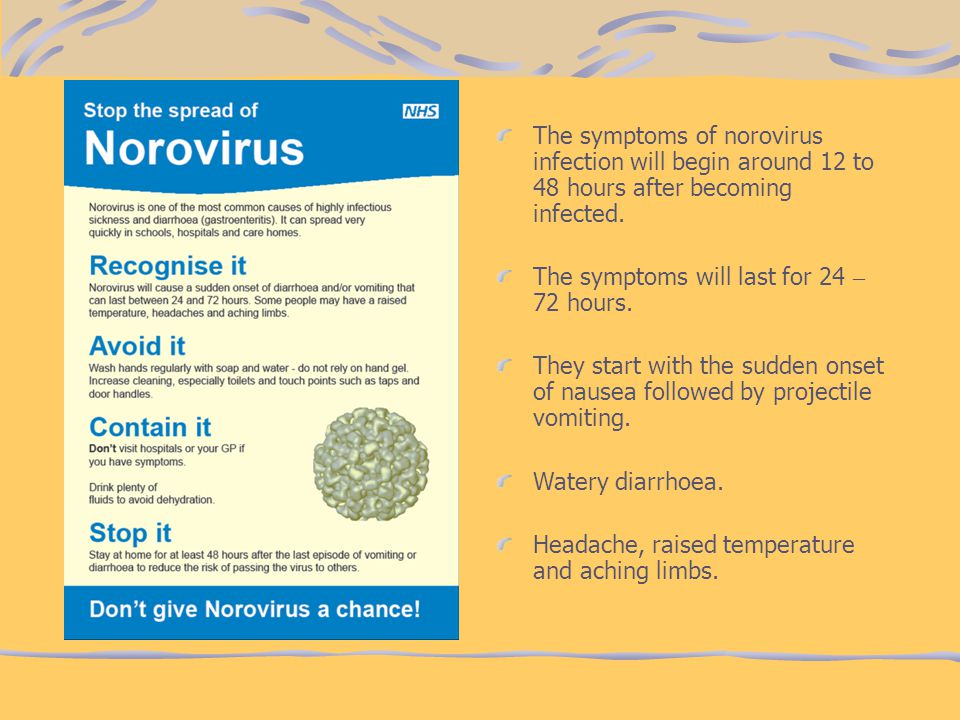 The symptoms of norovirus infection will begin around 12 to 48 hours after becoming infected. The symptoms will last for 24 – 72 hours. They start wit