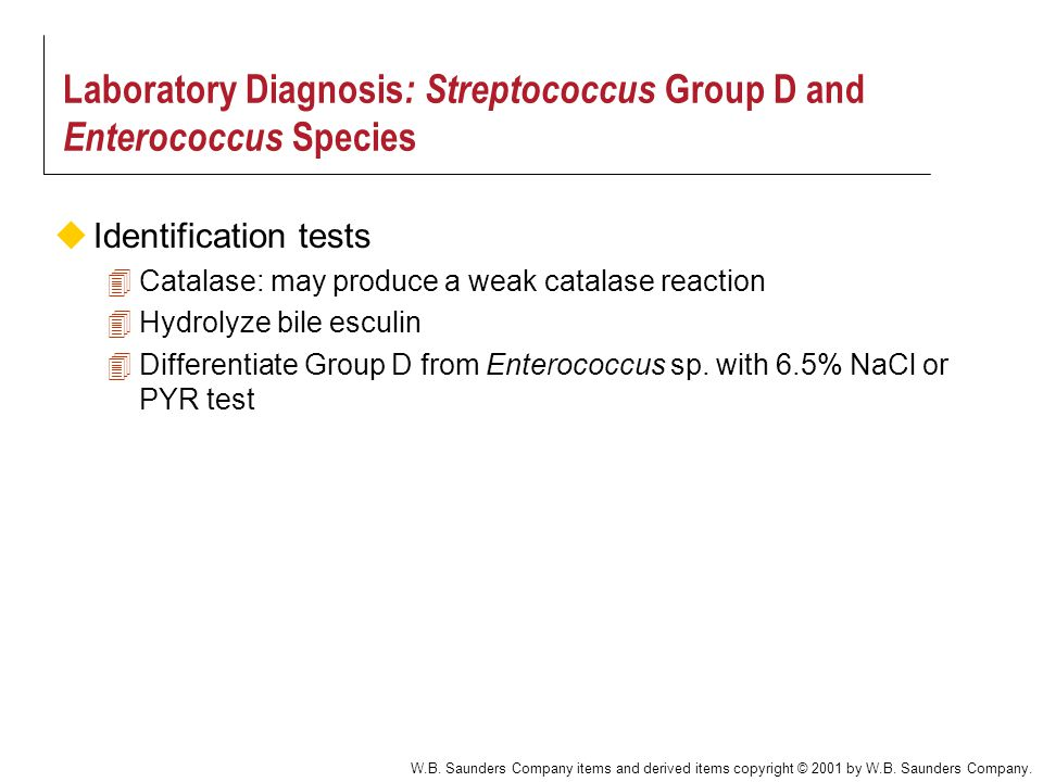 W.B. Saunders Company items and derived items copyright © 2001 by W.B. Saunders Company. Laboratory Diagnosis : Streptococcus Group D and Enterococcus