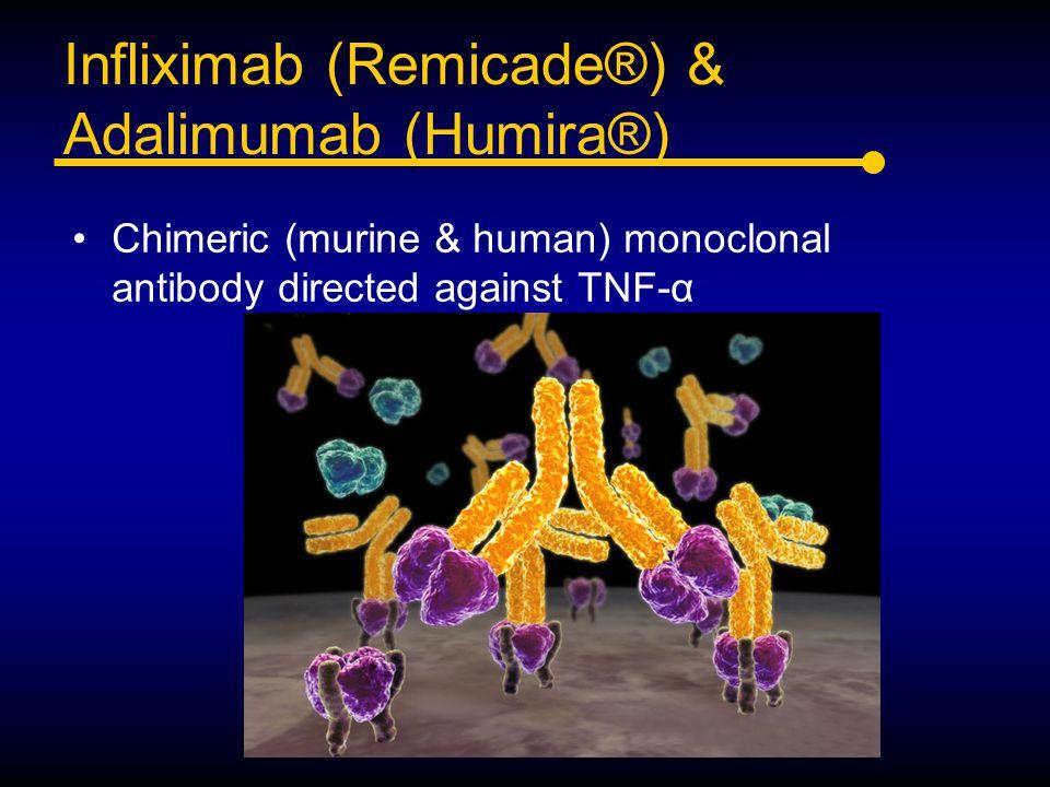 Infliximab (Remicade®) & Adalimumab (Humira®) Chimeric (murine & human) monoclonal antibody directed against TNF-α