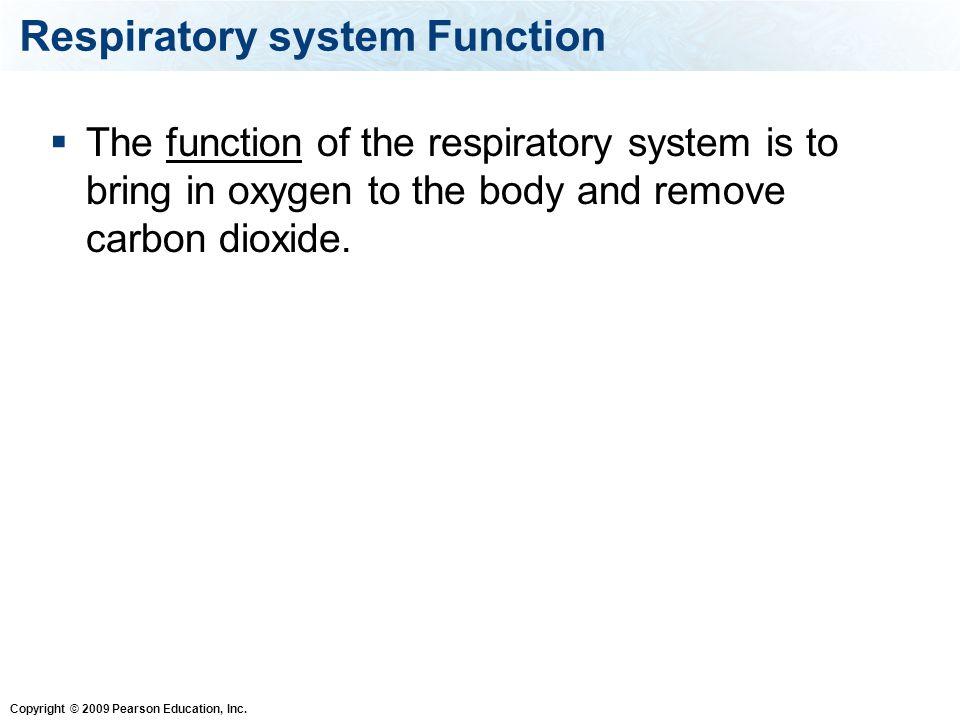 Copyright © 2009 Pearson Education, Inc. Alveoli Figure 14.8