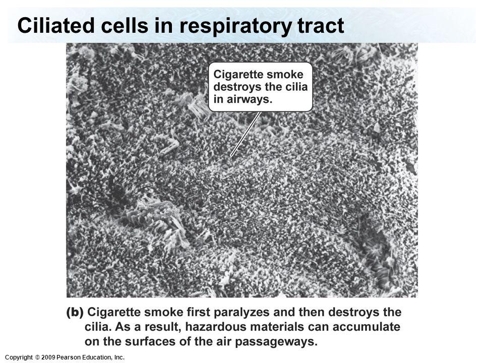 Copyright © 2009 Pearson Education, Inc.Do you smoke.