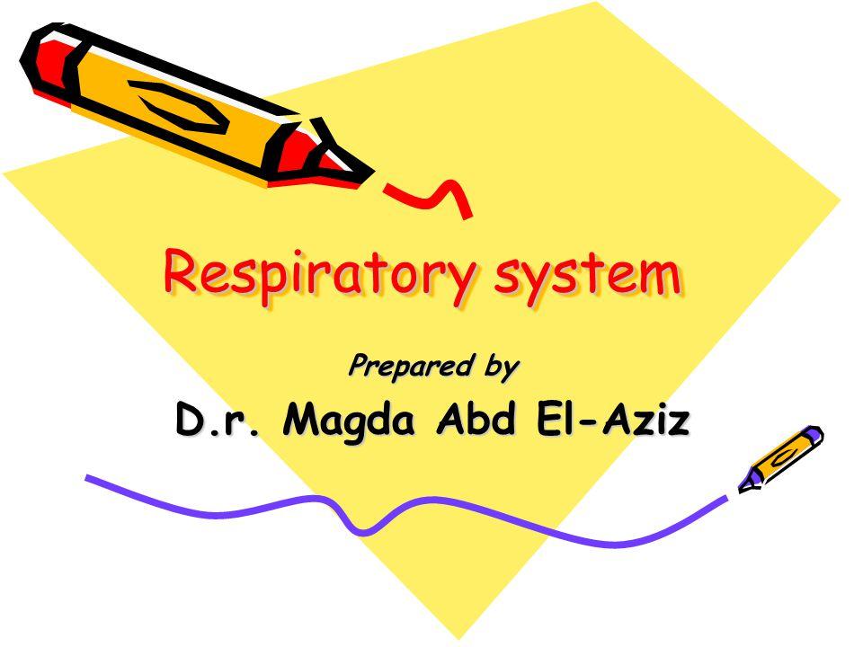 Respiratory system Prepared by D.r. Magda Abd El-Aziz